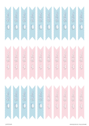 Free Printable Flag Tags Gender Reveal Baby Shower Little Prince or Princess