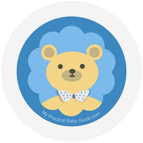 Bear Baby Shower - My Practical Baby Shower Guide