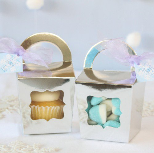 Frozen Treat Favor Boxes