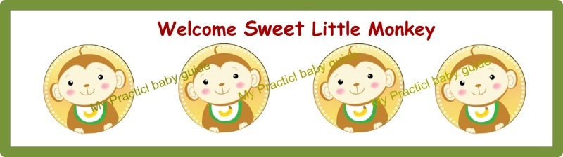 Free Printable Monkey Baby Shower Custom Bottle Labels