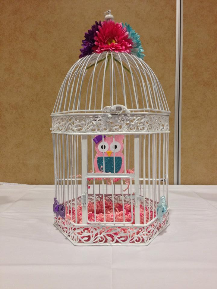 Baby Owl in a bird Cage