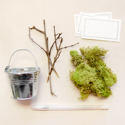 How to Assemble a Potted Moss Place Card Holder Favor for an Eco Friendly Baby Shower?