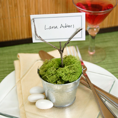 DIY Potted Moss Place Card Holder Baby Shower Favor