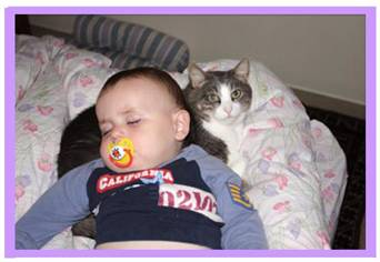 baby sleeps on a cat