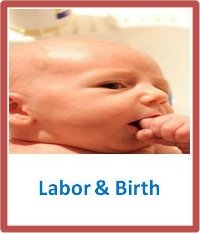 labor and birth